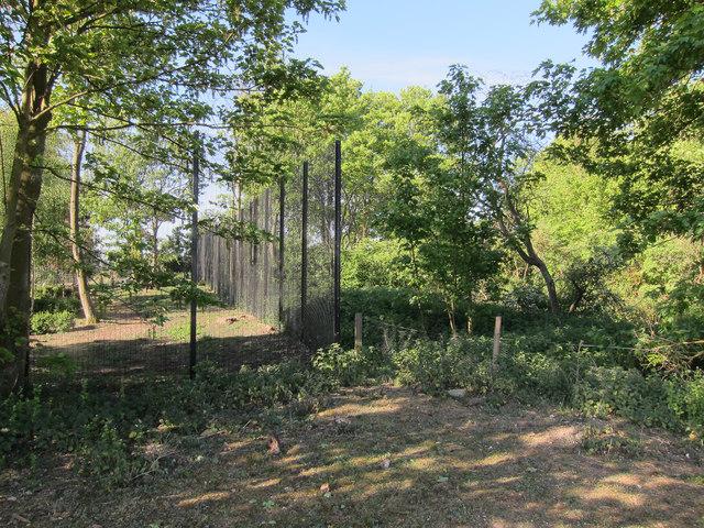 Beech House perimeter fence