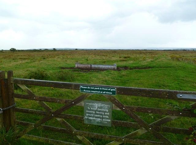 Lower Pennington, nature reserve