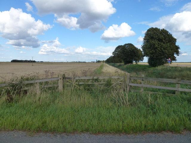 Farmland alongside Thorney Dyke