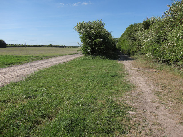 Restricted byway to B1103
