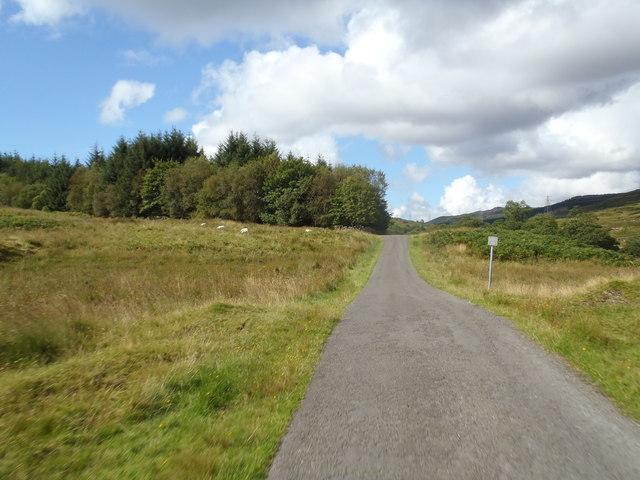 Plantation Corner in Craigshinnie Glen