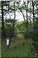 TQ1461 : Oxshott Heath: path to Heath Road by Hugh Craddock