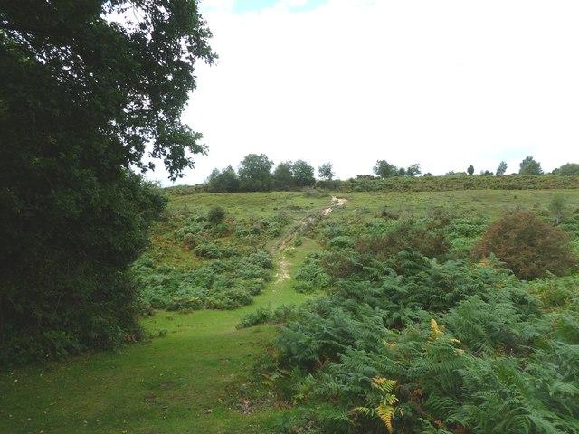 Frogham, Windmill Hill