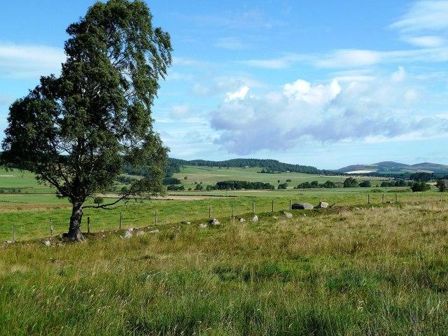 Farmland in the Spey Valley