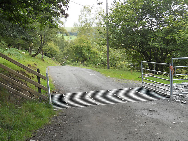 Cattle grid on the drive to Dolwen