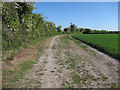 TL6167 : Restricted byway to Landwade Road by Hugh Venables