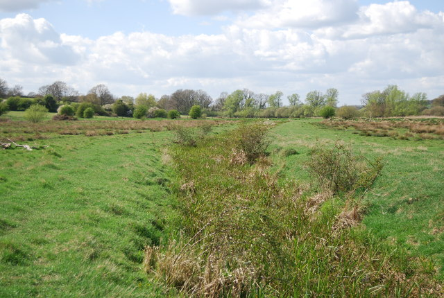 Ditch in the Brede Valley