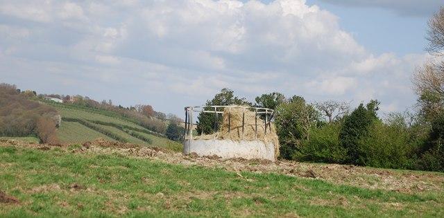 Cattle feeder, Lower Snailham