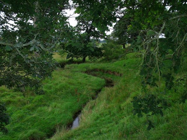 Fence Burn near Morpeth flowing through Crooked Plantation