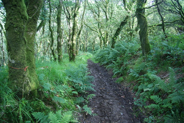 Path down into the Gwaun Valley