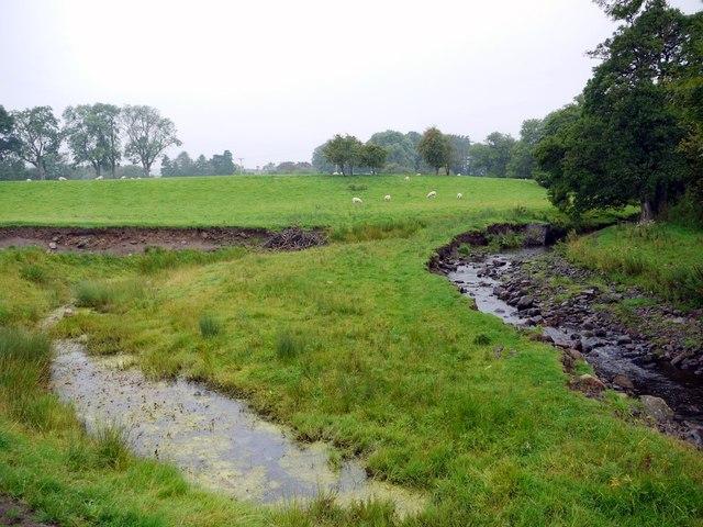 Thornhope Beck
