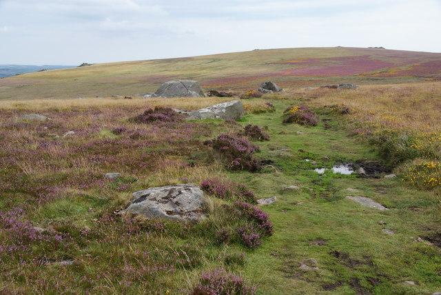 Footpath on Mynydd Caregog