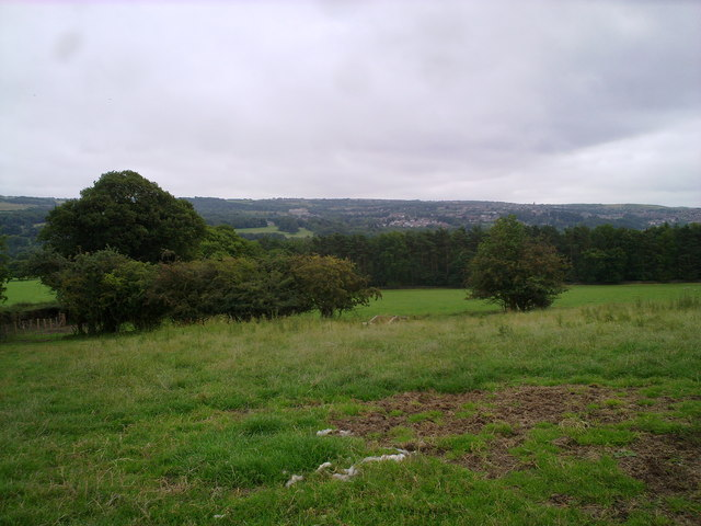 View South from Hill Top