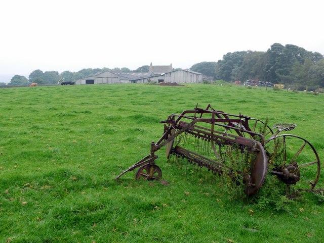 Sheep pasture north of Baal Hill Farm