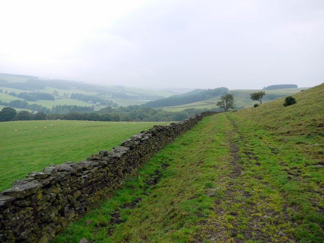 Old track to Backstone Bank
