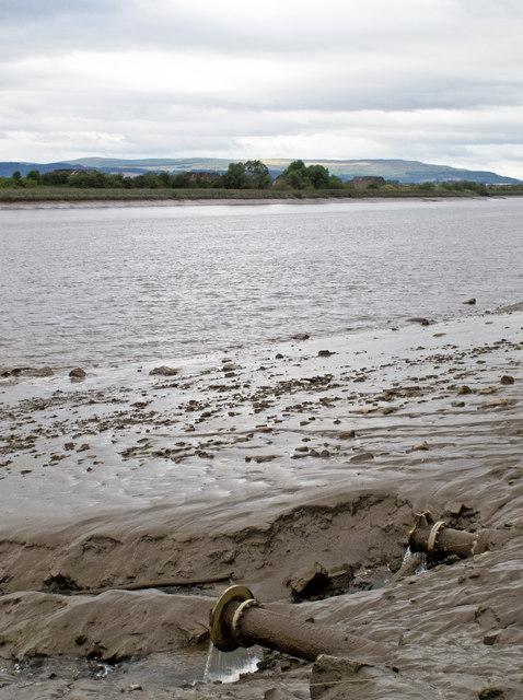 River Forth near Cambus