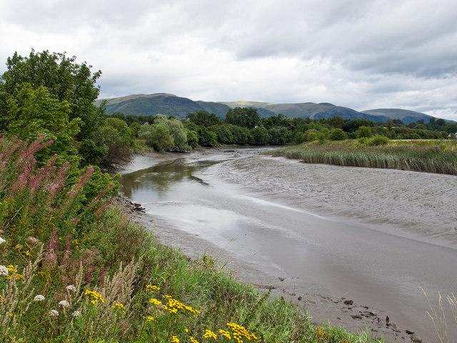 River Devon near Cambus