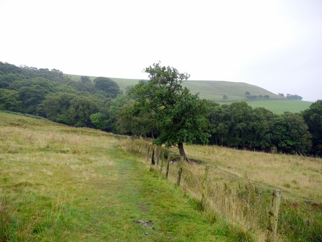 Footpath north of Spring Gill