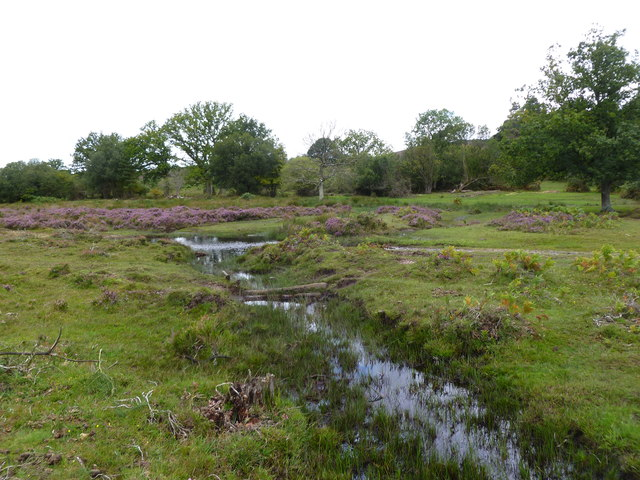 Ogdens, tributary