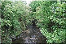TQ2172 : Beverley Brook - downstream by N Chadwick