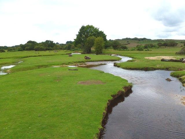 Ogdens, Latchmore Brook