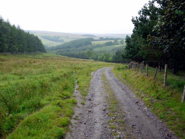 Track beside Quarry Wood