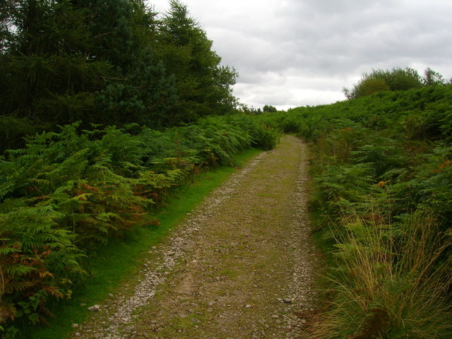 Track on the western side of Grimwith Reservoir