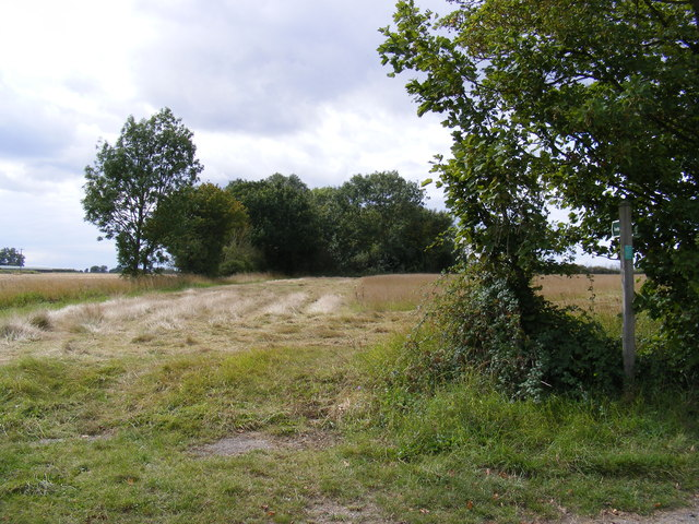 Footpath to Neave Lane