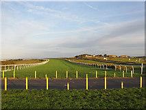 TQ3305 : Brighton Racecourse by Simon Carey