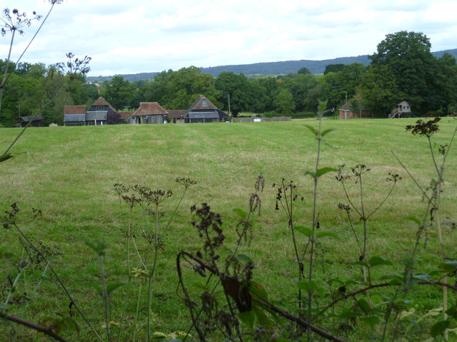 Field view west of Cranleigh