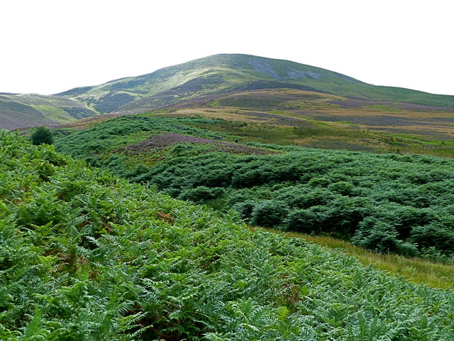 Carnethy Hill (573 m) from Logan Burn