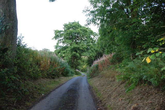 Steep Hill on the Sheepwalks Lane, Kinver