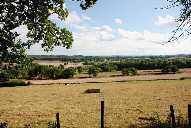Grassland from the Sheepwalks  Lane