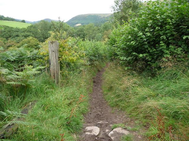 Footpath in the Vale of Ewyas