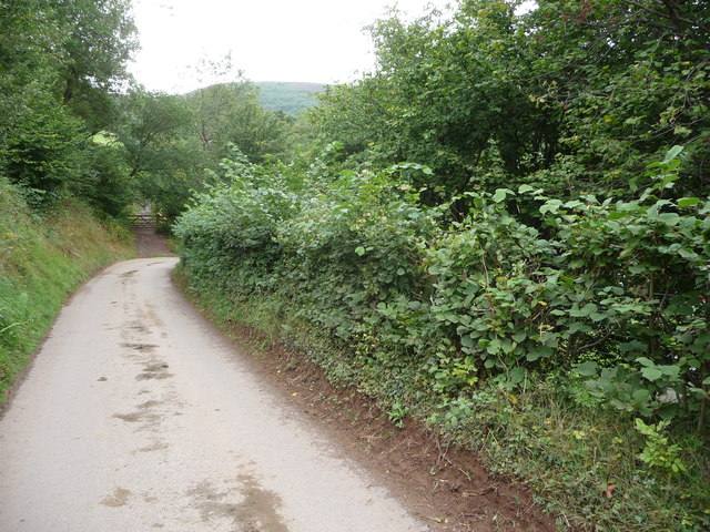 Lane and footpath in the Vale of Ewyas