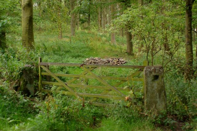 Gate, Busky Dike Lane