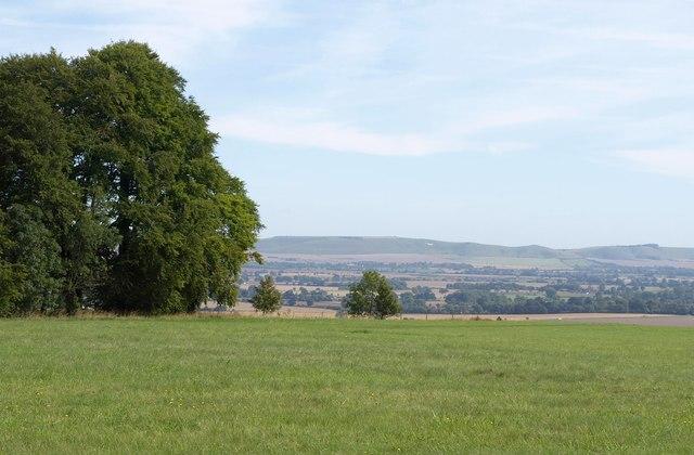 Urchfont Hill