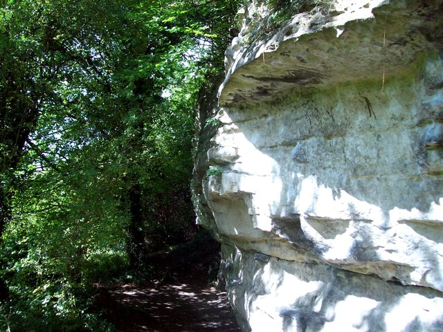 Limestone Outcrop near Roche Abbey