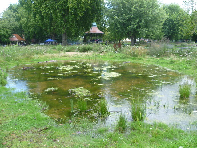 Pond in the Nature Conservation Area, Myatts Fields Park