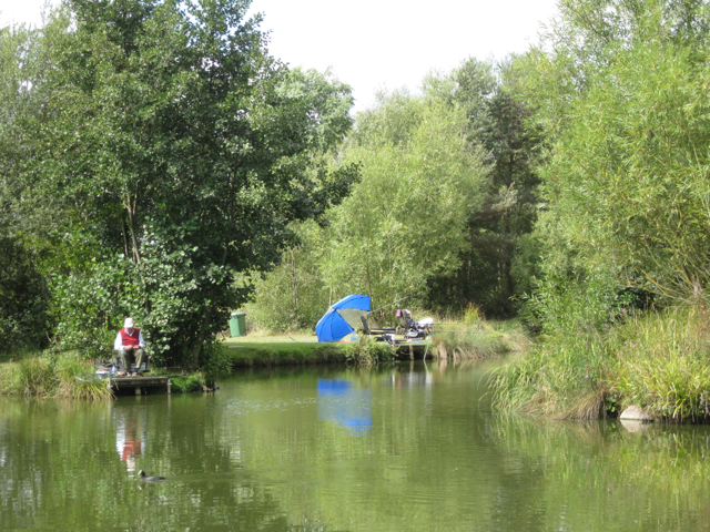 'Anniversaries' fishing lake, Packington Somers
