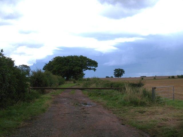 Green Lane, Kirklington