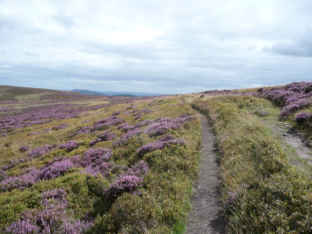 Walking in the Black Mountains