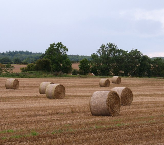 Arable land at Kirklington