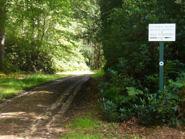 Path to Lake Cottage