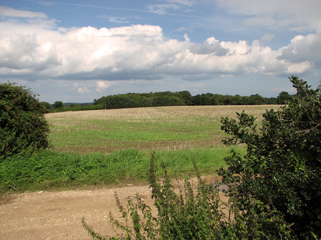 Harvested field north of Mill Lane, Briningham