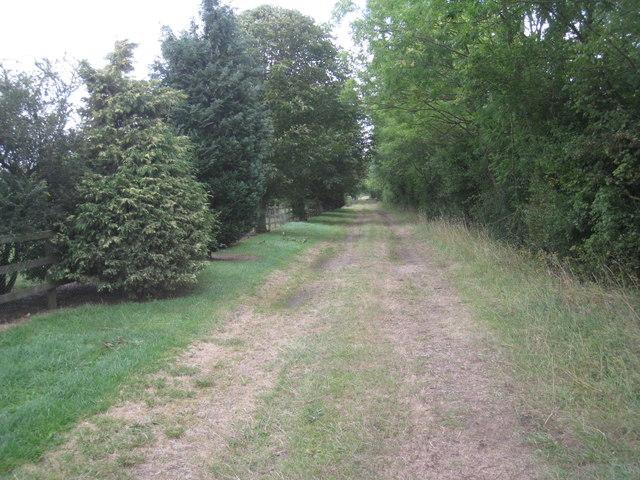 South Scaffold Lane