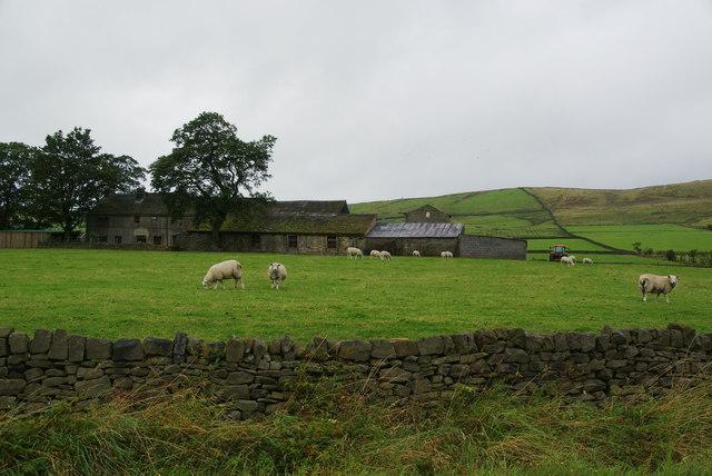 Near Salter Syke Farm