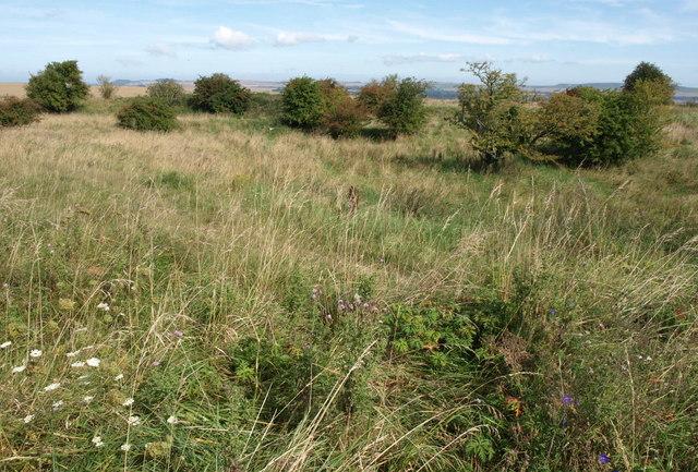 Downland, Redhorn Hill