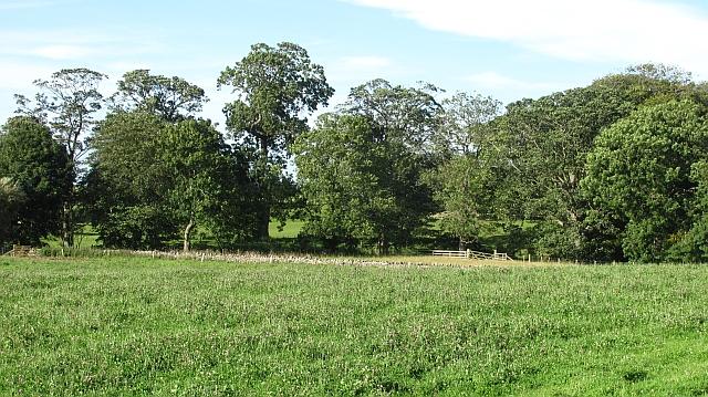 Woodland, Tuggal Hall