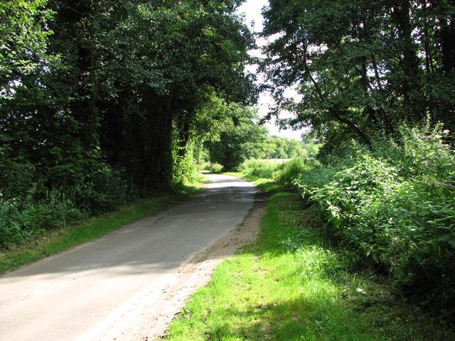 Rural lane past Narford Lake